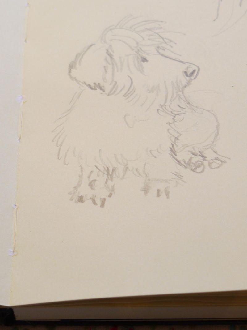 Ellie-sketch-close-2