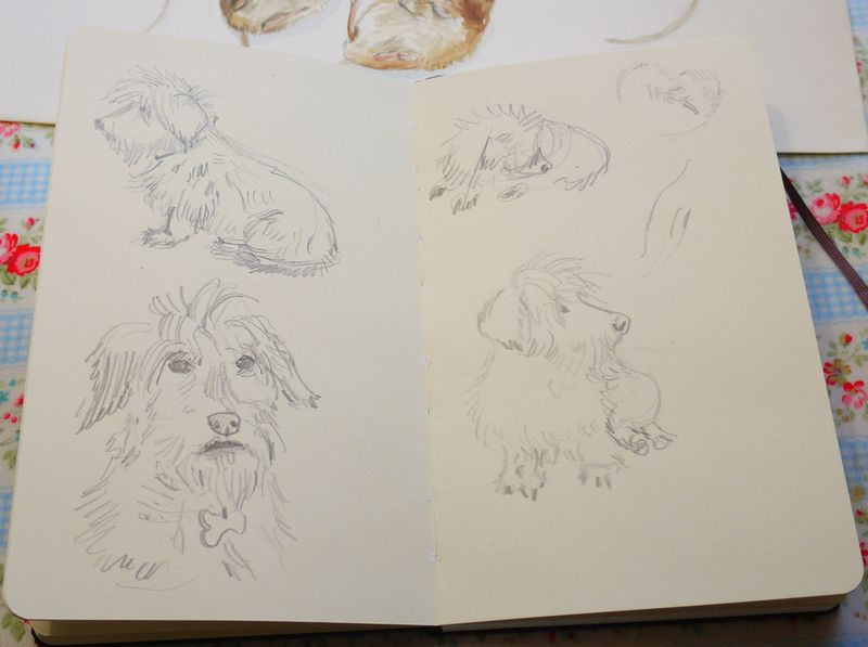 Doggies-sketch